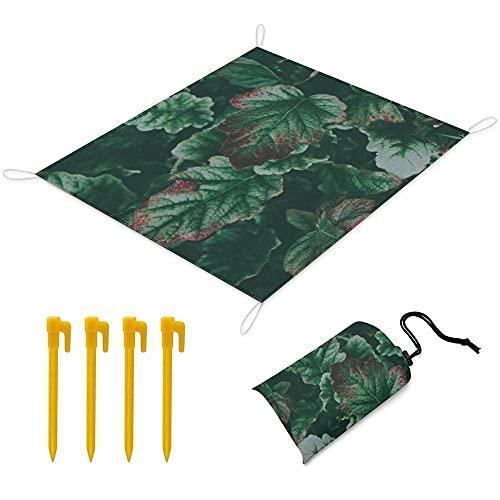 Manta Picnic 150x145 cm Alfombra de Playa con 1 Bolsas y 4 Clavos Fijos Impermeable Plegable Camping Accesorios para la Playa Camping y Picnic - Planta Verde