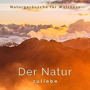 Der Natur zuliebe: Natürliche Atmosphäre, Stressfrei Hintergrund, Naturgeräusche für Wellness