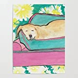 Beaxqb Pintar por Numeros para Adultos Niños Perro Lindo Animal Pintura por Números con Pinceles y Pinturas Decoraciones para el Hogar Lienzo Regalo de Pintura para 40x50cmSin Marco