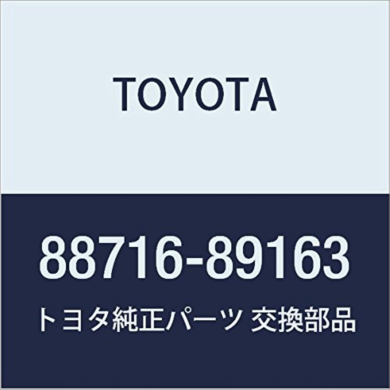 Toyota 88716-89163 Cooler Refrigerant Pipe