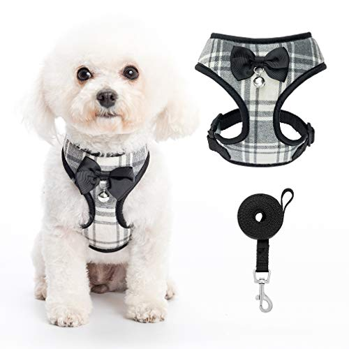 PUPTECK Small Dog Harness and Leash Set, Soft A-line Chest Strap with Bowite Bell, No Pull Dog Harness for Small Dogs Cats Puppies