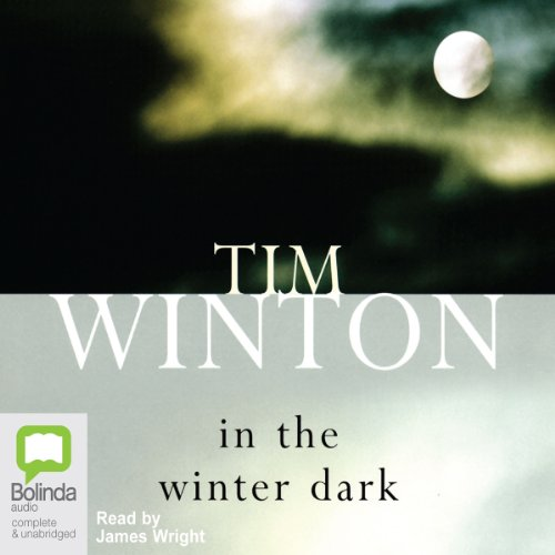 In the Winter Dark audiobook cover art