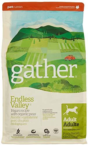 Petcurean Gather Endless Valley Vegan Recipe Dry Dog Food