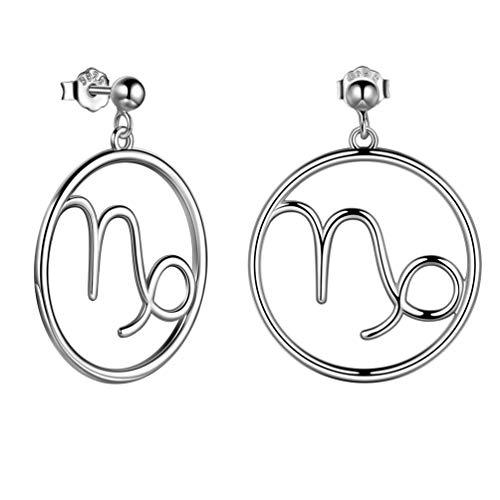 Steinbock Sternbild-Ohrringe 925 damen Ohrringe Silber Sternzeichen Ohrstecker Schmuck für Damen und Mädchen Weihanchten Geschenke FE0071M