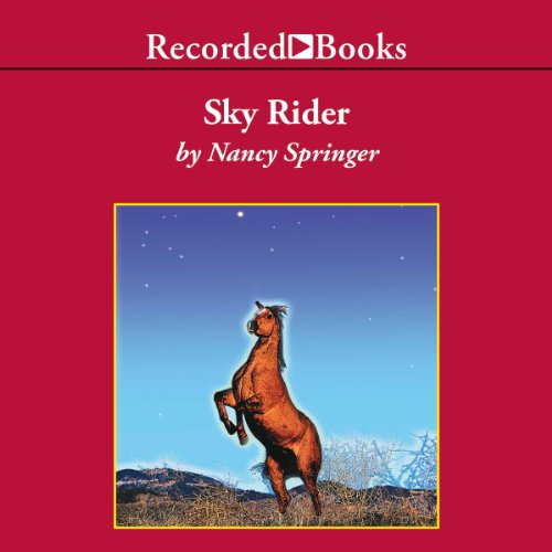 Sky Rider audiobook cover art
