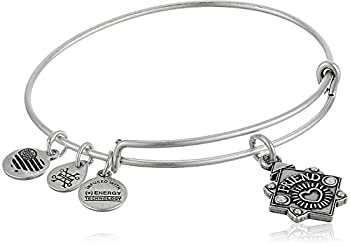 Alex and Ani Womens Because I Love You Friend Charm Bangle Bracelet Rafaelian Silver Expandable