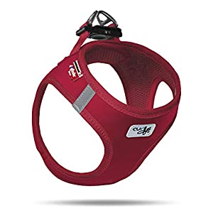 Curli Vest Harness Softshell with Air-Mesh Lining Step-in Dog Harness Lightweight Breathable Dog Harnesses for Small Medium Dogs Red 2XS