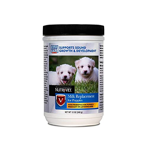 Nutri-Vet Milk Replacement Powder for Puppies | Contains Probiotics & Supports a healthy Gut | 12 Ounces