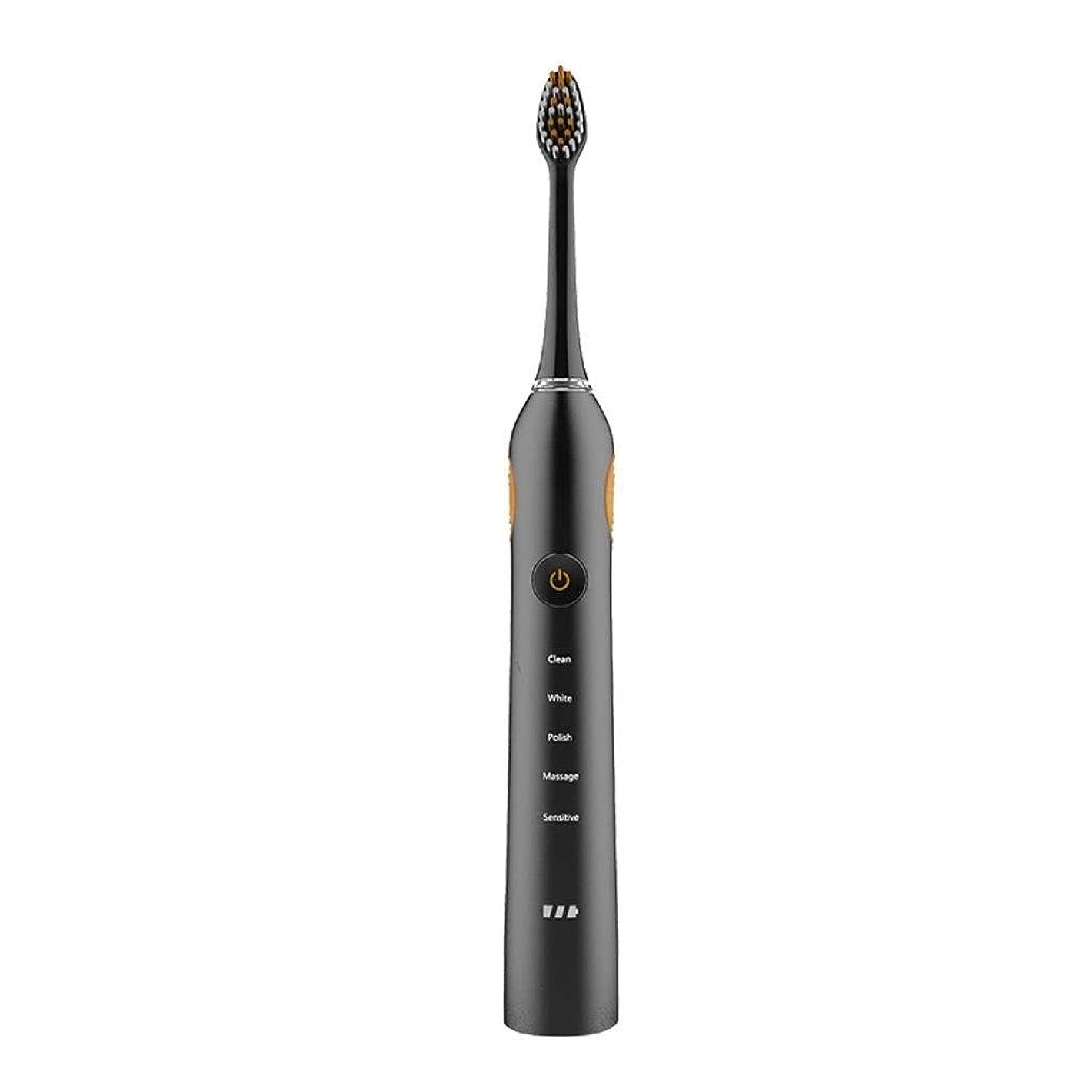 現実には今晩人道的WSJTT 新世代電動歯ブラシ5つのモード誘導は防水スマートタイマー充電し、2交換可能なブラシでリマインダーは人間工学に基づいたデザインをヘッズ (Color : Black)