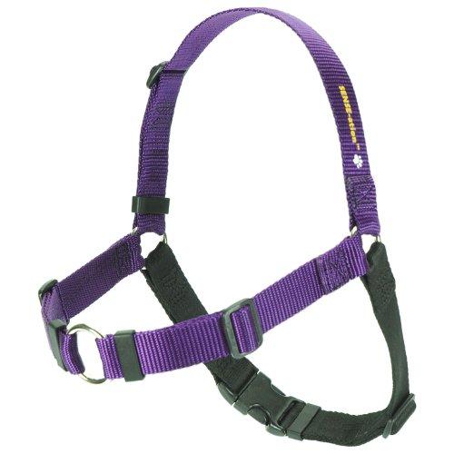 "SENSE-ation No-Pull Dog Harness - Medium/Large 1"" Wide (Black)"