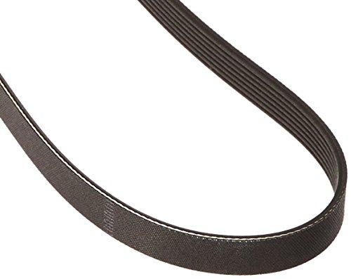 Genuine Honda 31110-5A2-A01 Alternator Belt