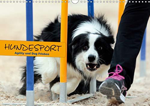 HUNDESPORT - Agility und Dog Frisbee (Wandkalender 2021 DIN A3 quer)