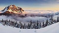 大人のためのパズル500ピース山頂に触れる雲家のための木製の組み立て装飾