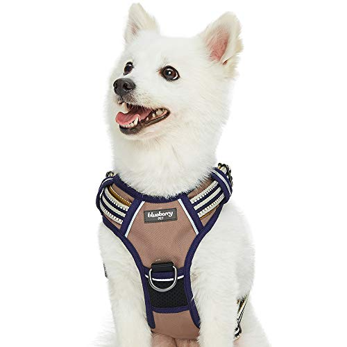 Blueberry Pet Soft & Comfy 3M Reflective Multi-Colored Stripe Mesh Padded No Pull Dog Harness Vest with Front/Back Leash Clips, Medium, Olive & Blue-Gray