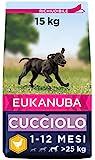 Eukanuba Cibo Secco per Cuccioli in Crescita, per Cani di...