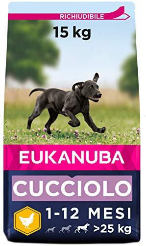Eukanuba, Cibo Secco per Cani Cuccioli, Taglia Grossa, 1-24 Mesi, Crocchette Cani con Pollo, 15 Kg
