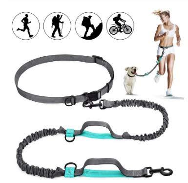 Sicherheitsgeschirre YSJ Hände Hüfte Hundeleine mit Dual Bungees, kostenloser Steuerung for bis zu 150 Lbs Hunden, Durable Dual Griff Bungee-Leine mit Adjustab