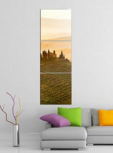 Acrylglasbilder 3 Teilig 50x150cm Landschaft Belvedere Toskana vertikal Druck Acrylbild Acrylbilder Acrylglas 14?6713, Acrylgröße 9:Gesamt 50x150cm