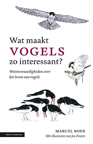 Wat maakt vogels zo interessant: Wetenswaardigheden over het leven van vogels