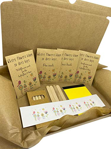 Children's Survival Garden KIT - Keep The Kids Busy! Blooming Marvellous Gifts Set to Keep Your Children Occupied During The School Closures & Isolation Present Gardening Set Birthday Present