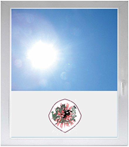INDIGOS UG Sichtschutzfolie Sonnenschutz Glasdekorfolie Fensterfolie mit Motiv satiniert Blickdicht - GME260 - Drachen Skateboard - 1000x500mm