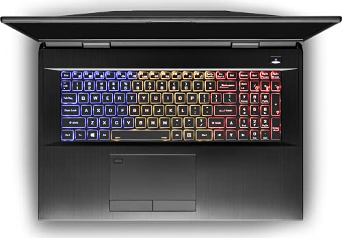 CUK Clevo X170 KMG 17 Inch Workstation Gaming Notebook (Intel Core i9, 128GB RAM, 3x2TB NVMe SSD, NVIDIA GeForce RTX 3080 16GB, 17.3″ FHD 300Hz, Windows 10 Pro) Gamer Laptop Computer