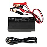 ExpertPower 12V 20A Smart Charger for Lithium LiFePO4 Deep Cycle Rechargeable Batteries
