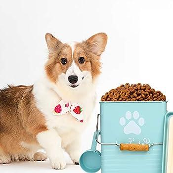 Boîte de rangement de nourriture pour animaux domestiques avec couvercle et pelle pratique, boîte résistante à l'humidité pour garder les aliments secs, facile à transporter