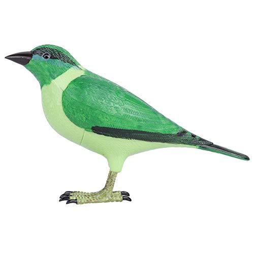 Hakeeta Draadloze Deurbel, Novelty Realistische Vogelvormige deur welkomstring Chime. De ringbel imiteert het heldere geluid van vogels Zingen.