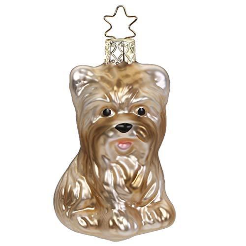 Inge-glas - Christbaumschmuck, Baumschmuck - Hund Yorkshire Terrier - Größe: 7,5 cm - Glas mundgeblasen