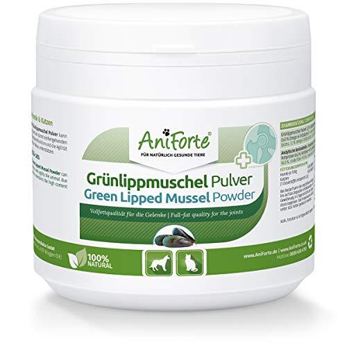 AniForte Grünlippmuschelpulver für Hunde & Katzen 250g - Natürliches Grünlippmuschel Pulver in Vollfettqualität 10,2%, Glycosaminoglycane 3,3%, unterstützt Gelenkfunktionen
