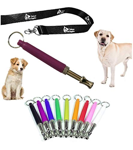 Dog Whistle for training dogs, Anti bark control device to stop neighbors barking dog, Silent dog whistles with lanyard, Ultrasonic tool that makes dogs stop barking, Train and stop the barks (Purple)