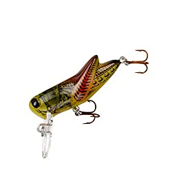 Lures Crick hopper Fishing Lure by Rebel