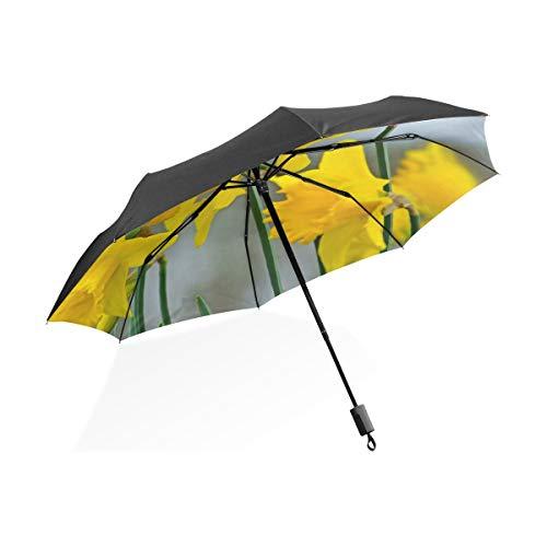 Farbe Regenschirm Narzissen Im Wald...