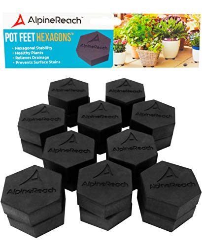plant container feet - 9