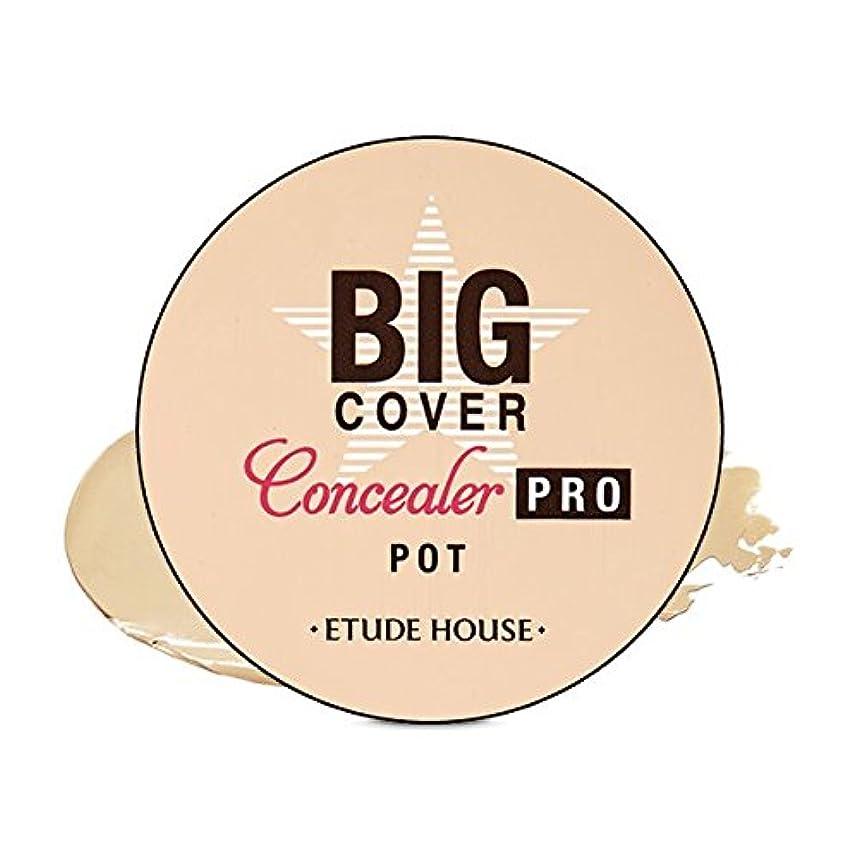 エンジン不調和撃退するETUDE HOUSE Big Cover Pot Concealer PRO (Beige) / ビッグカバーポットコンシーラー プロ(ベージュ) [並行輸入品]