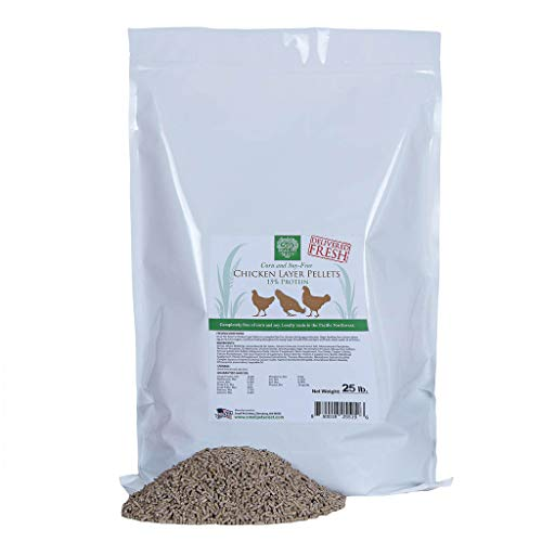 Small Pet Select- Chicken Layer Feed Corn & Soy Free, 15% Protein, 25lb, Brown (Chicken Layer Feed No Soy, No Corn)