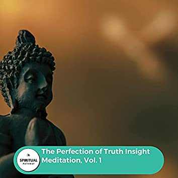 The Perfection Of Truth Insight Meditation, Vol. 1