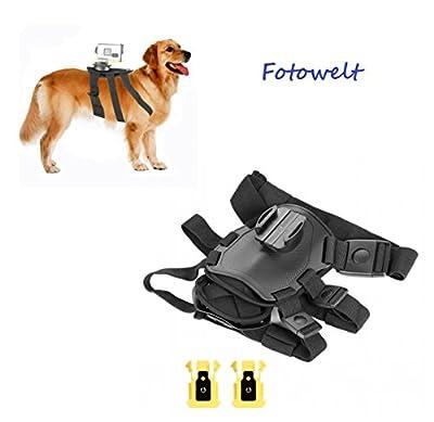 Dog harness Strap