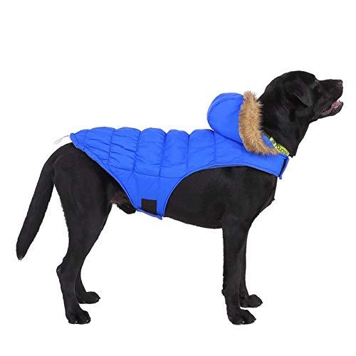 Warme jassen en jassen voor honden, winter hond kleding huisdier hond strakke capuchon dikke hond kleding kunstbont kraag super warme jassen voor huisdier hond, S, Foto