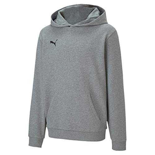 PUMA teamGOAL 23 Casuals Hoody Jr Pullover, Medium Gray Heather, 176