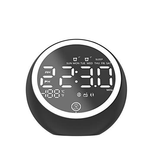 FENGLI Nachttisch-Wecker, kleines Radio, LED-Digitalwecker, Tischuhr, Bluetooth-Lautsprecher, Digitaluhr mit Doppel-Weckeranzeige, zwei USB-Anschlüsse, FM-Radio