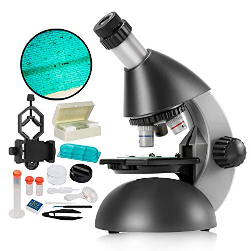 Microscope for Kids Beginners 40X- 640X with Bottom led Light, Plastic Microscope Slides Kit, Phone Holder, for Early Education Home Learning MAXLAPTER -Grey