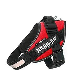 Julius-K9, 16IDC-R-0, IDC Powerharness, dog harness, Size: M/0, Red