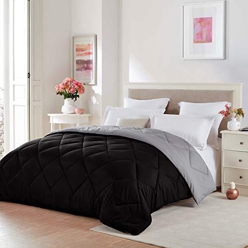 Seward Park Solid, Reversible Color Microfiber Comforter,Hypoallergenic Plush Microfiber Fill, Duvet Insert or Stand-Alone Comforter, Fall/Winter Blanket, Twin Extra Long, Black/Gray