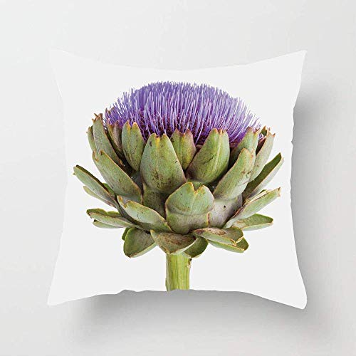 N\A Close-up Organic Artichoke Image with Thistles for Vegetarian Healthy Food Theme Throw Pillow Case Cushion Cover for Sofa Bedroom Car