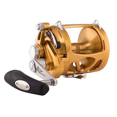 Penn INT50VIW International VI Single Speed Fishing Reel