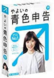 やよいの青色申告 19 【最新】 令和・消費税法改正対応  パッケージ版