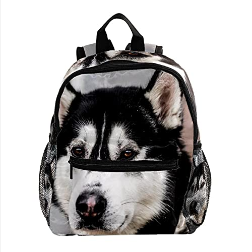 XiangHeFu Mochila escolar para niñas niño caminata al aire libre bolsa de viaje mochila Perros de Alaska Perro trineo Mochila estampada