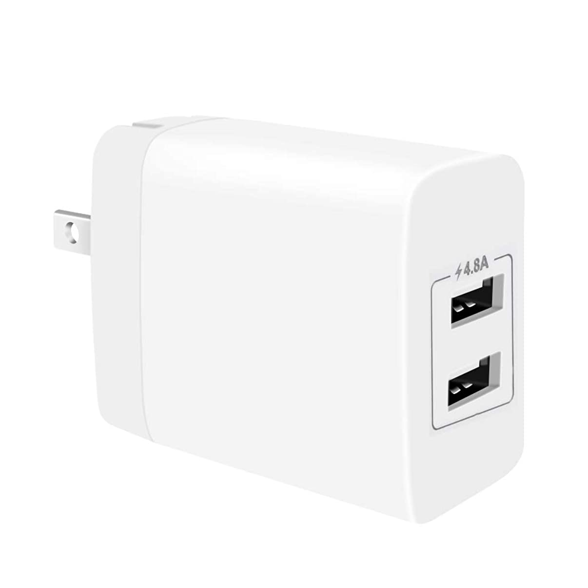 FIT-POWER 24W 2.4A Dual USB Wall Charger, Smart 2 Port 4.8A Output USB Adapter Charger with Foldable Plug for iphone X/XR/Xs/Xs Max/8/8 Plus/7/7 Plus/6/6s/6 Plus/6s Plus/5/SE/4, ipad Pro/Mini/Mini2